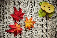 Leaves red autumn on a grey knitted background. Button yellow red leaves knitting Royalty Free Stock Photo