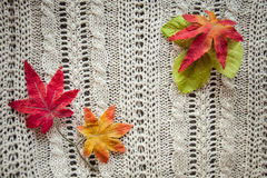 Leaves red autumn on a grey knitted background. Red leaves knitting  textile botany Stock Photography