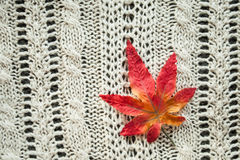 Leaves red autumn on a grey knitted background. Red leaves knitting  textile botany Royalty Free Stock Photo