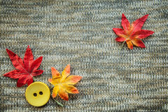 Leaves red autumn on a grey knitted background. Red leaves knitting  textile botany button yellow Royalty Free Stock Image