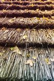 Leaves on Reed Roof Royalty Free Stock Image