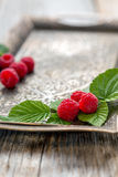 Leaves and ripe raspberries. Stock Photo
