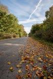 Leaves road autumn. Autumn empty road Ukraine october Stock Images