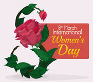 Leaves, Rose and Bud forming Number Eight for Women's Day Commemoration, Vector Illustration. Leaves, stem, and pink rose give shape to number eight , day for Royalty Free Stock Photo