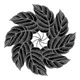 Leaves rosette black original woodcut Royalty Free Stock Image