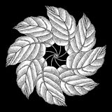 Leaves rosette original woodcut Stock Photo