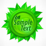 Leaves round label Royalty Free Stock Photo