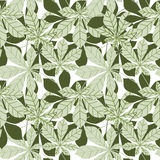 Leaves seamless patern. Spring nature wallpaper in retro japanse Royalty Free Stock Images