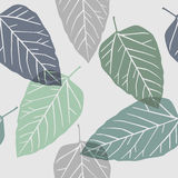 Leaves - seamless pattern Stock Images