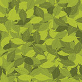 Leaves seamless pattern Stock Images