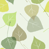 Leaves - Seamless Pattern Stock Photography