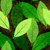 Leaves seamless pattern. Seamless green and  brown grunge leaves pattern Stock Photos
