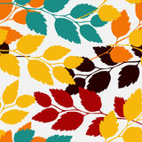 Leaves, seamless pattern. Vector illustration of autumn leaves, seamless pattern Stock Photos