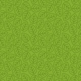 Leaves seamless pattern green color line style for decoration ec Royalty Free Stock Photography