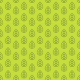 Leaves seamless pattern green color line style for decoration or Stock Photo