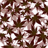 Leaves seamless pattern, vector background. Autumn  on a white . For the design of wallpaper, fabric, decoration. Leaves seamless pattern, vector background Royalty Free Stock Photo