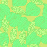 Leaves seamless pattern in vintage style. Cute Stock Photo