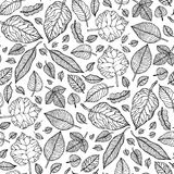 Leaves. Seamless vector background. Royalty Free Stock Image