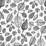 Leaves. Seamless vector background. Stock Image