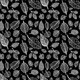 Leaves. Seamless vector background. Royalty Free Stock Photos