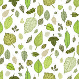 Leaves. Seamless vector background. Stock Photo