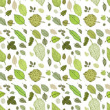 Leaves. Seamless vector background. Royalty Free Stock Photography
