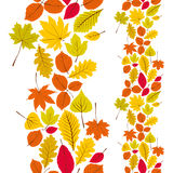 Leaves seamless wallpaper background, vector natural endless pat Royalty Free Stock Images