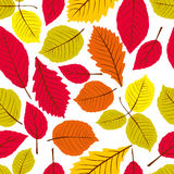 Leaves seamless wallpaper background, vector natural endless pat Stock Photos