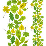 Leaves seamless wallpaper background, vector natural endless pat Royalty Free Stock Image
