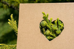 Leaves seen through heart shape Stock Image