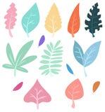 Leaves set isolated on white background. vector illustration