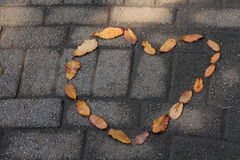 Leaves in the shape of a hart on dark rough paving Stock Images