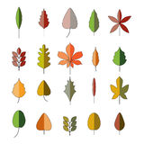 Leaves shapes and colors. Vector icons of different sorts of trees in autumn colors. Isolated on white background Royalty Free Stock Photography