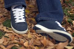 Leaves Shoes Royalty Free Stock Photos