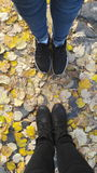 Leaves. With shoes Royalty Free Stock Photography
