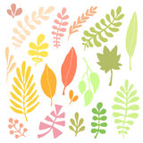 Leaves silhouette vector set. Autumn isolated decoration for greeting cards and stationery design. Royalty Free Stock Image