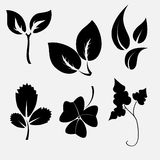 Leaves silhouettes Royalty Free Stock Images