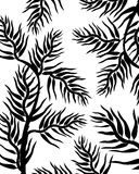 Leaves silhouettes. Black leaves silhouettes against white background Stock Photos