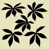 Leaves silhouettes Stock Photography