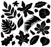 Leaves silhouettes collection 1 Royalty Free Stock Photo