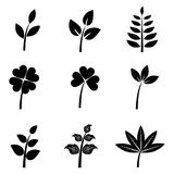 Leaves silhouettes - set. Set of nine black leaves silhouettes for your design isolated on white background. EPS file available Royalty Free Stock Image