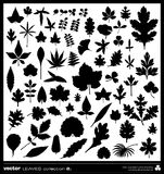 Leaves silhouettes vector Stock Images