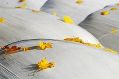 Leaves on silo balls Stock Photography