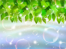 Leaves sky background soap bubble Royalty Free Stock Photo