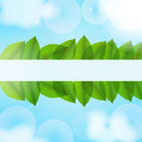 Leaves in the sky. Vector. Stock Image