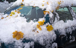 Leaves and snow on car exterior Stock Photo