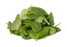 Leaves of spinach isolated on white background Stock Photography