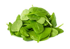 Leaves of spinach isolated on white background Stock Photos
