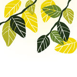 Leaves, spring - vector background Royalty Free Stock Image
