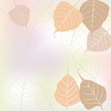 Leaves, spring - vector background Royalty Free Stock Photo